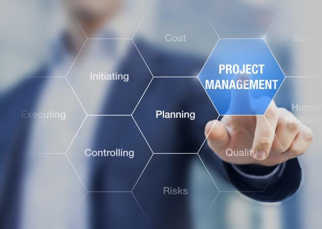 Project Management In The IT Industry